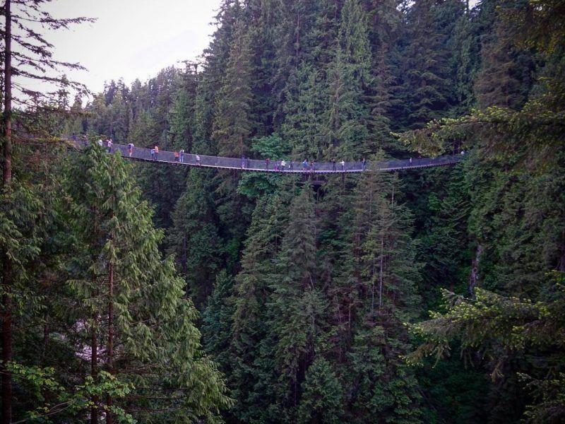 Vancouver verde